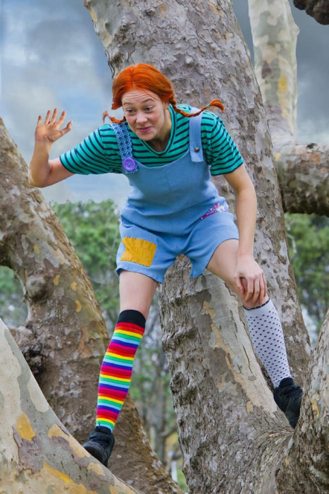 Pippi Longstocking 001